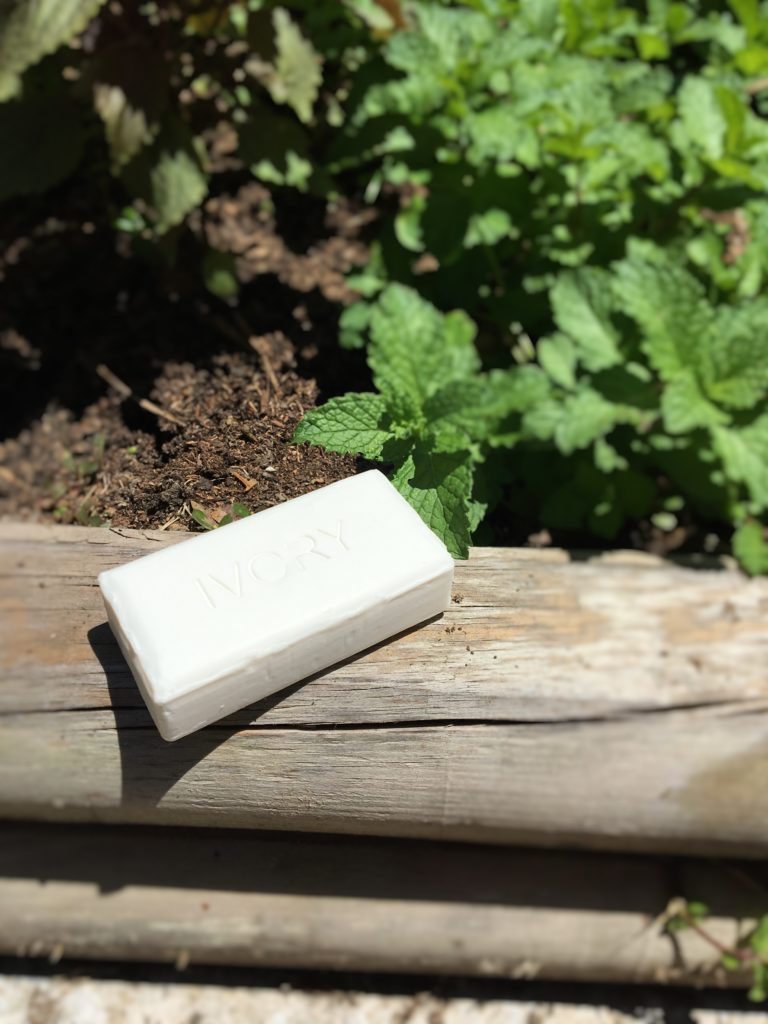 Ivory Soap Bar Product Review